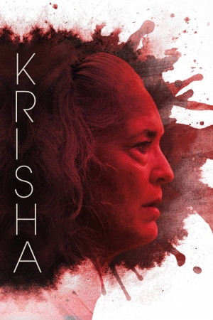 Cartaz oficial do filme Krisha (2015)